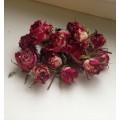 Розы бутоны сухие (мелкие) 12шт